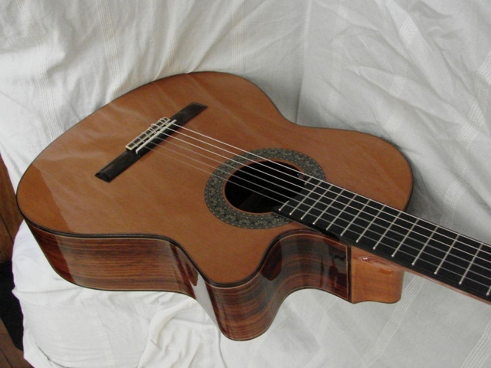 Photo Alhambra Guitars 5P CW E2 : Alhambra Guitars 5P ...