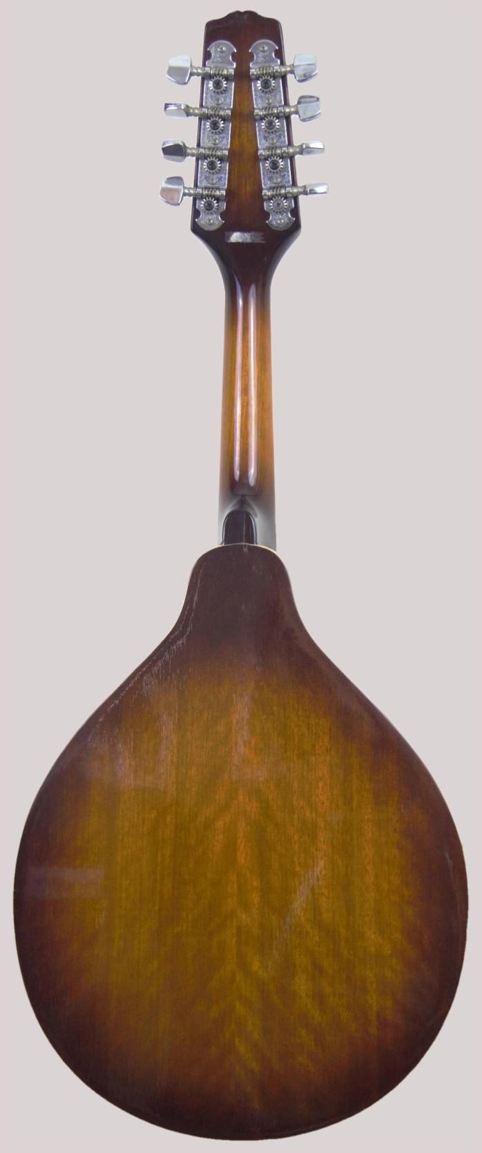 epi arch back f hole mandola