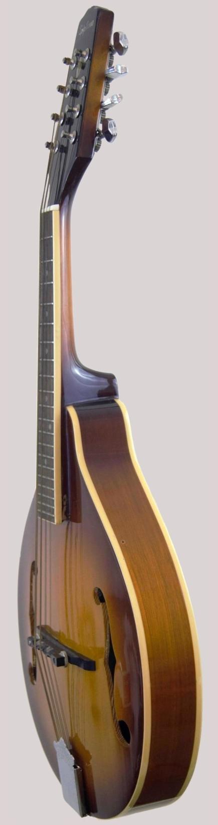 epiphone sunburst acoustic mando