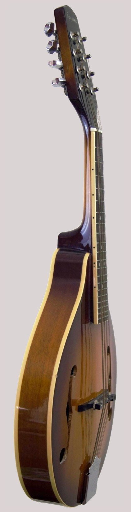 gibson epiphone a type mandolin