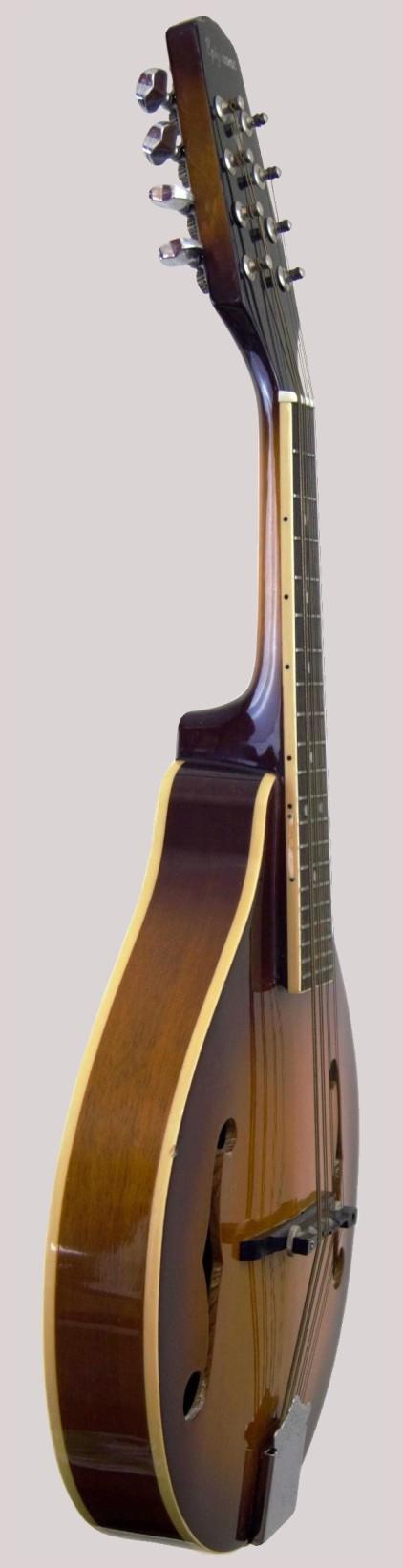 gibson epiphone a type mandolin