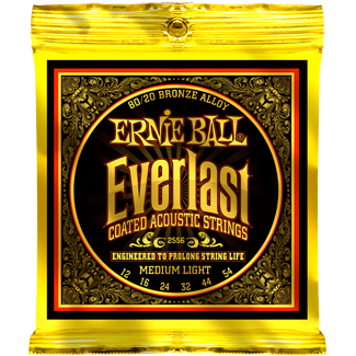 Everlast Coated 80 20 Bronze Acoustic Ernie Ball