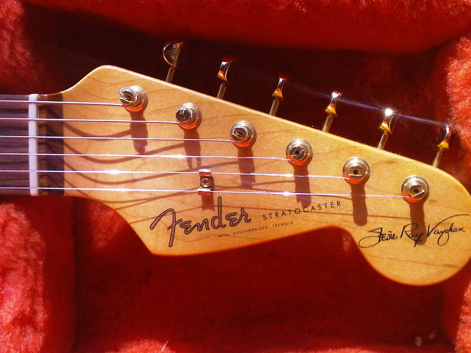 Famous Fender Stratocaster Guitar Wiring Diagrams Dummy Coil - Wiring Diagram For Srv Strat