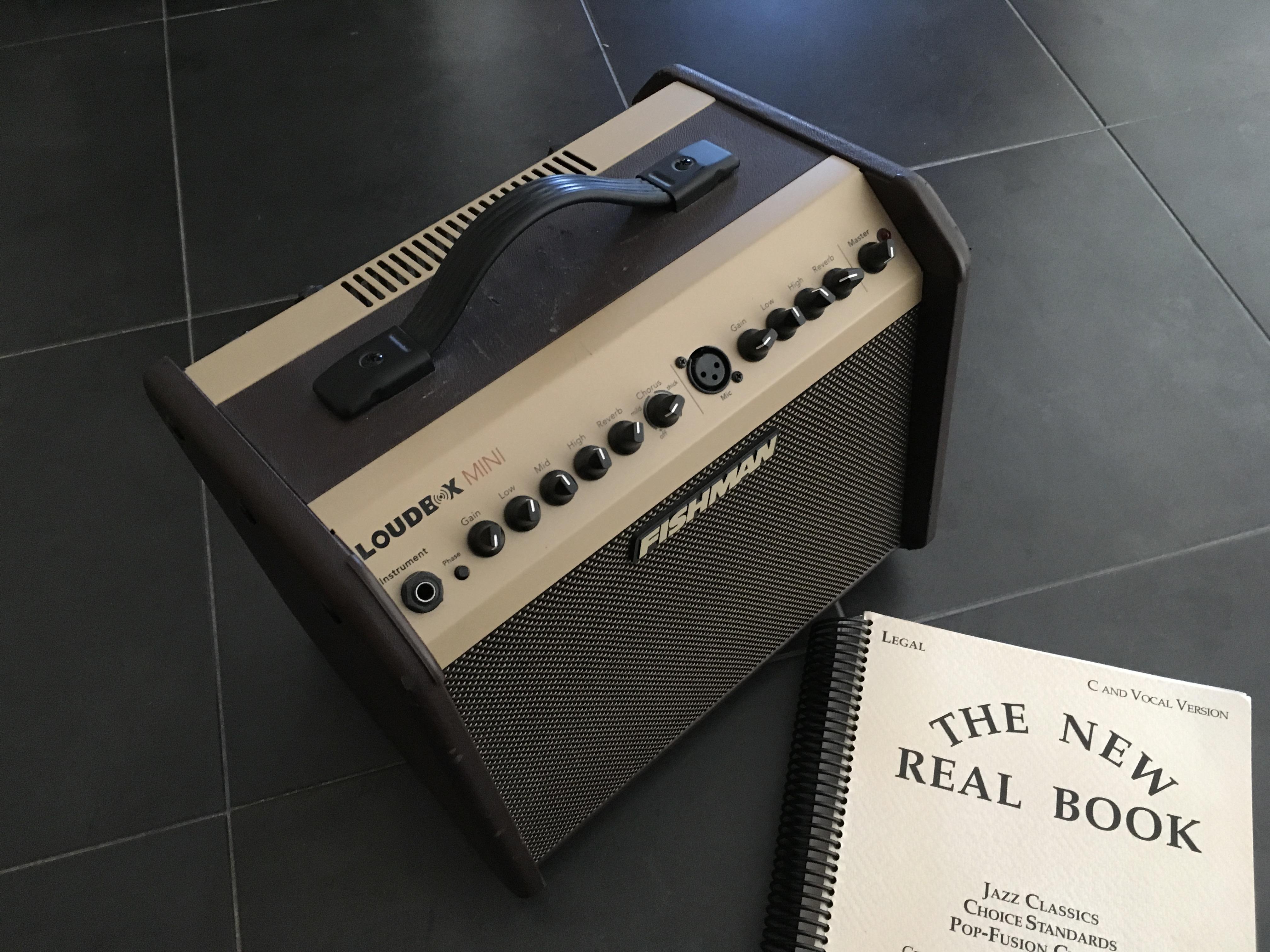 fishman loudbox mini image 1659400 audiofanzine. Black Bedroom Furniture Sets. Home Design Ideas