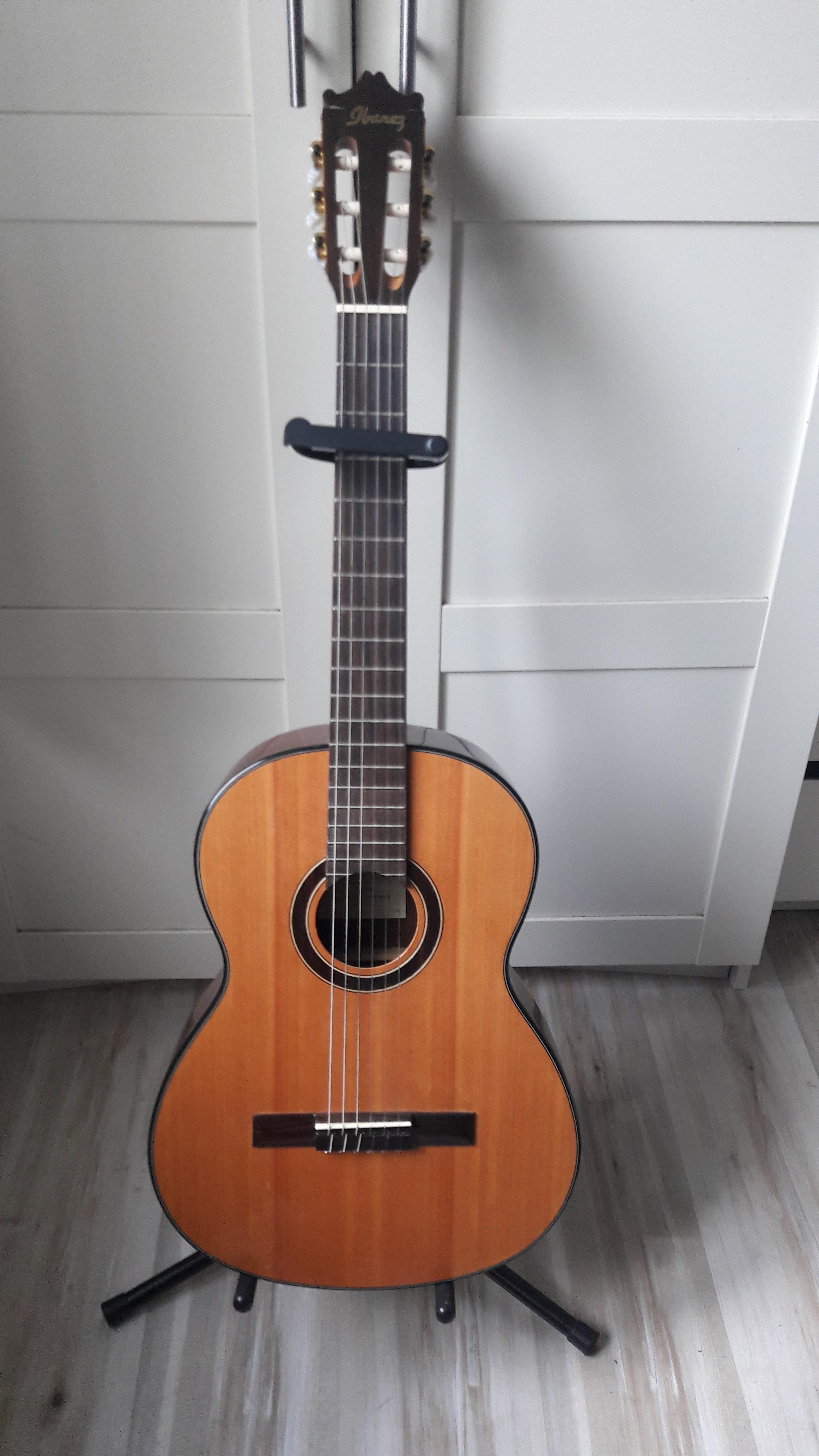Guitare classique ibanez housse pays de la loire for Housse de guitare