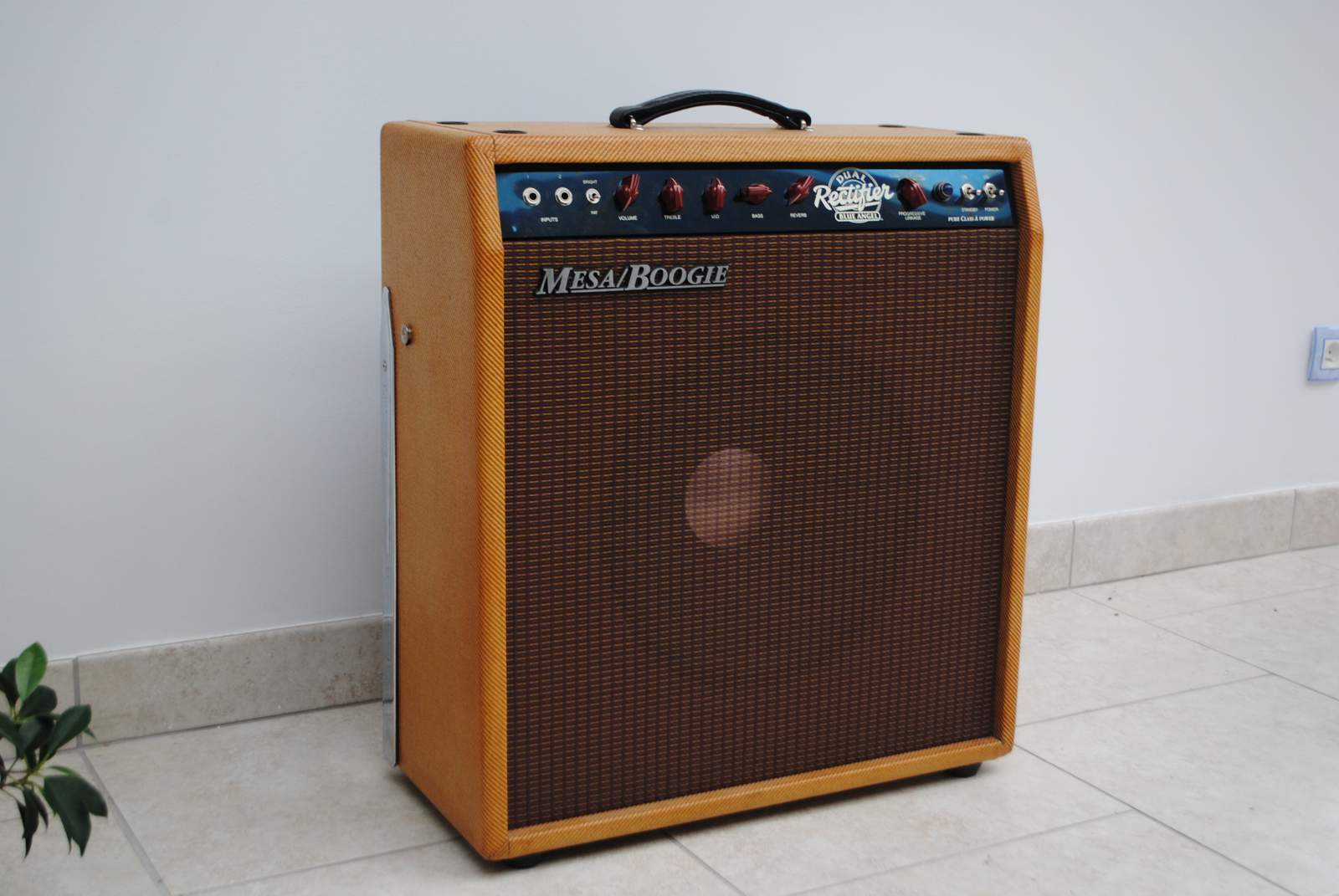 Mesa boogie blue angel 1x12 combo image 157044 for Mesa boogie blue angel