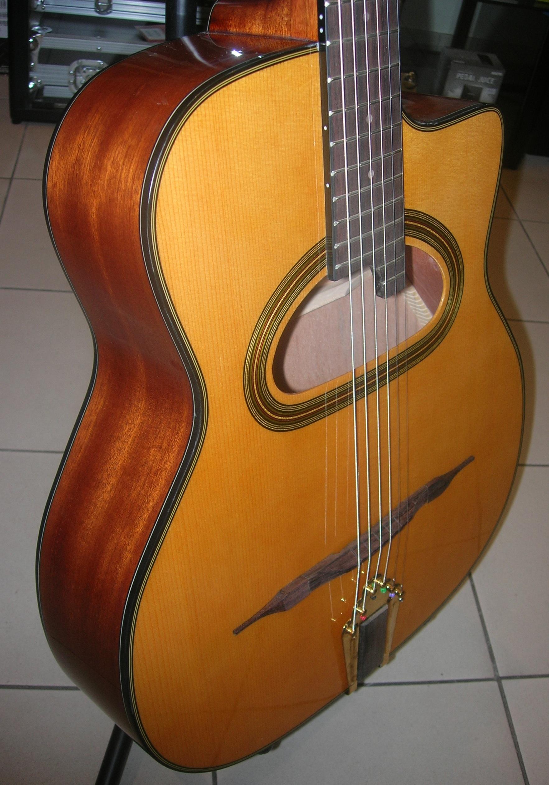 guitare nash