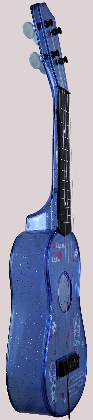 Zhejiang Dongri plastic standard Ukulele