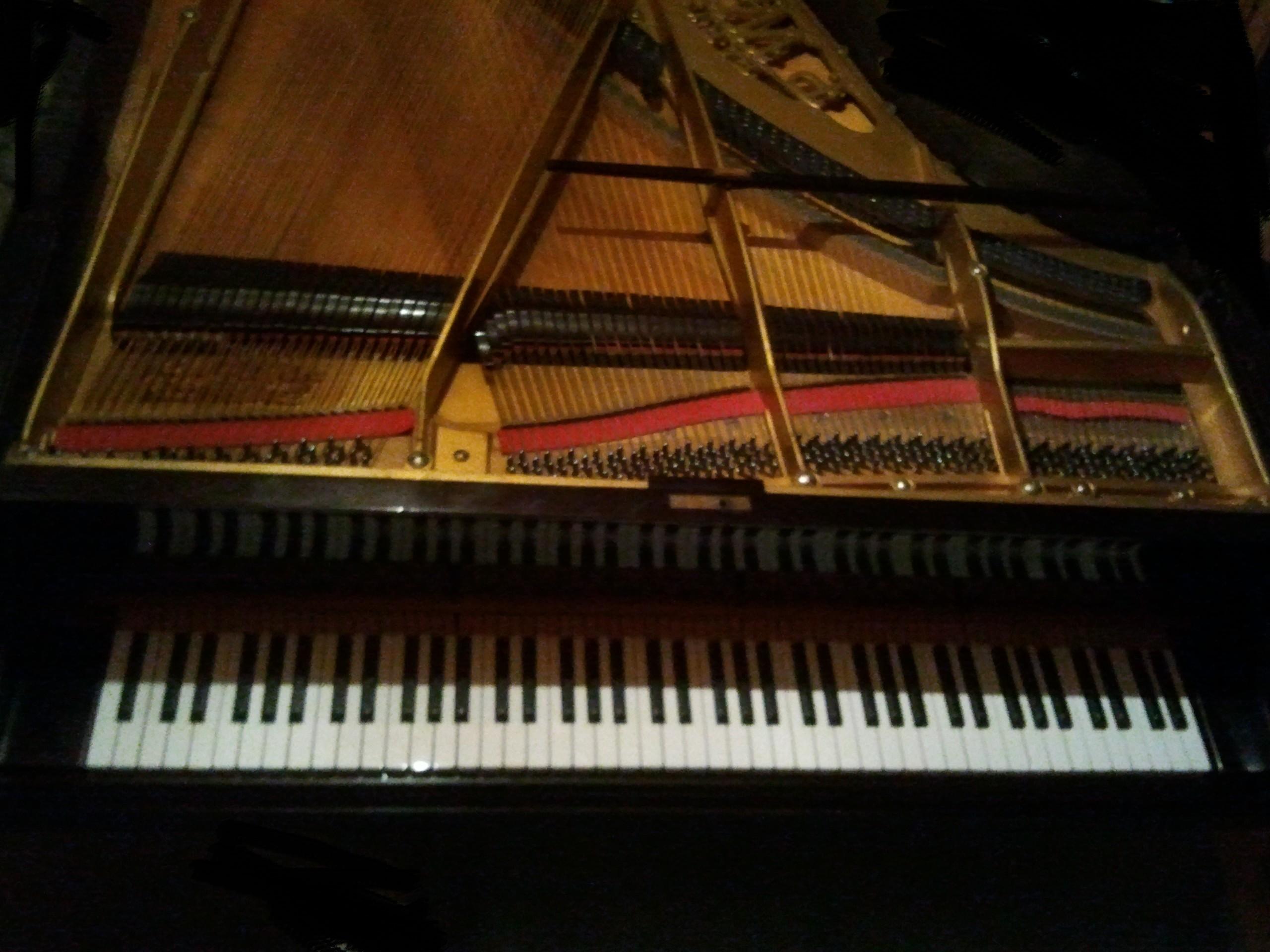 photo pleyel piano quart de queue pleyel piano pleyel quart de queue restaur 789470. Black Bedroom Furniture Sets. Home Design Ideas