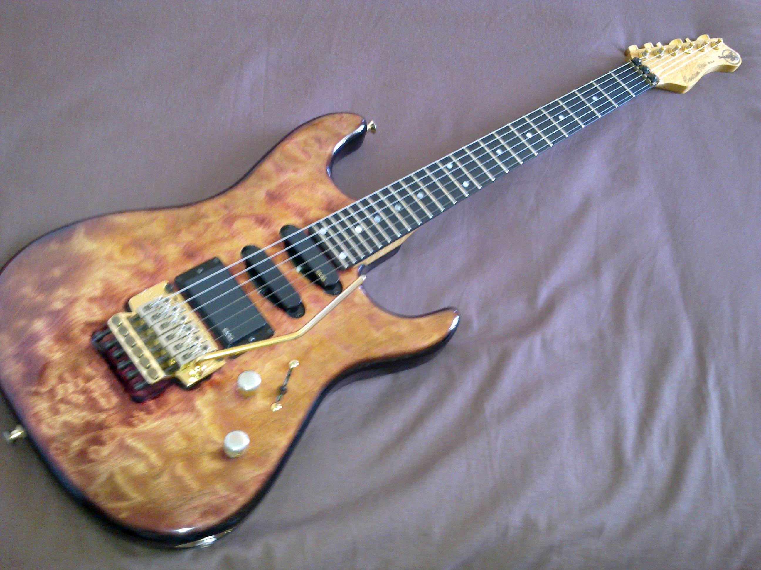 Valley Arts Guitars Custom Pro image (#334458) - Audiofanzine