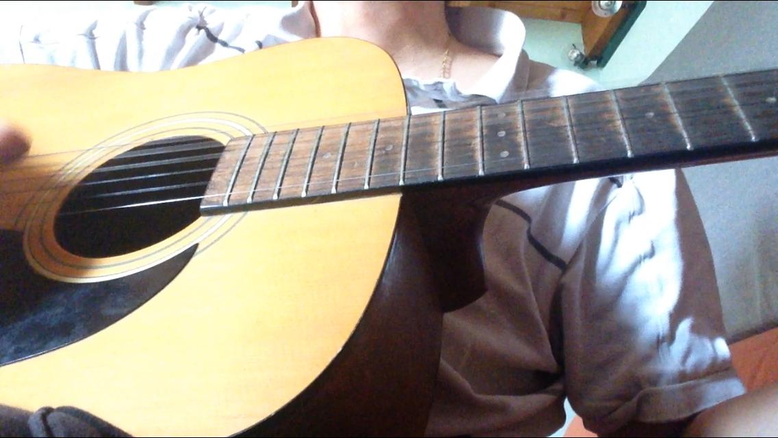 guitare acoustique vantage vs-5