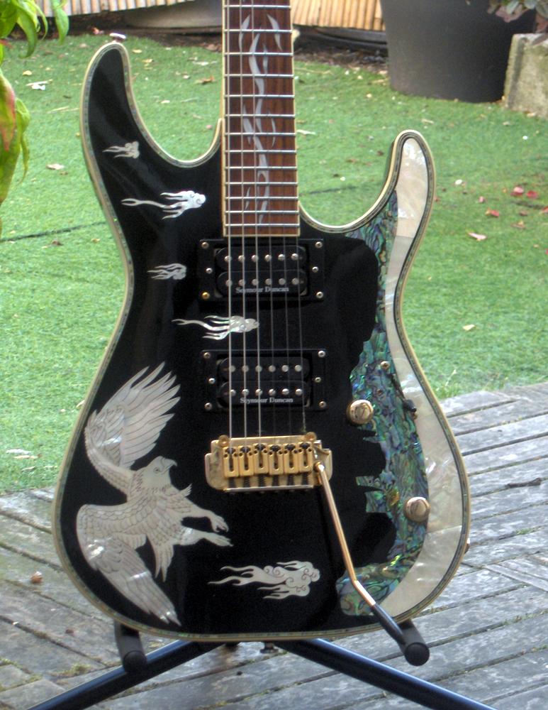 guitare wsl