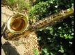 Saxophone ténor B&S Blue Label bicolore