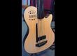 Godin A5 Fretless Bass - Parfait état!