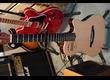 vend guitare godin nylon