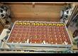 philicorda transistor organ mint tres bon état