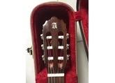 Alhambra Guitars 3C CW E1 (40529)