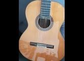 Alhambra Guitars 6P