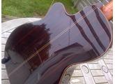 Alhambra Guitars 9C