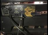 Ampeg BT-25
