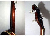 Aria banjo 5 cordes