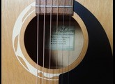 Art & Lutherie Wild Cherry CW