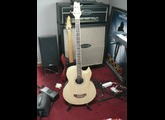 Art-Luthier Electro-acoustic Bass
