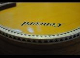 Atrics guitar slide