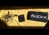 Audix ADX10FLP