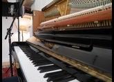 Bechstein Concert 8