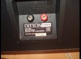 DITTON3 (4).JPG
