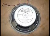 Celestion G12H100 (6393)