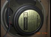 Celestion G12M Rola & Pre-Rola (Bass Cone)