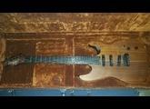 Chapman Guitars ML1 Pro NT Walnut