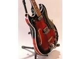 Fender F-35 (98191)