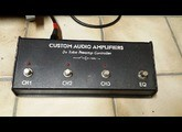 Custom Audio Electronics 3+