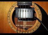 DiMarzio DP132 Acoustic Quick Mount