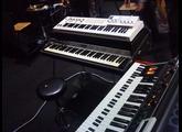 Keys 2014.JPG