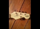 Eastwood Guitars Warren Ellis Signature Tenor