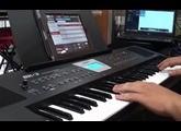 Eden Bass Amplification NC410