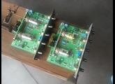 Egnater DLX module