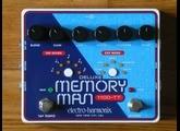 Electro-Harmonix Deluxe Memory Man 1100-TT