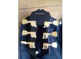 Epiphone Les Paul Custom (38458)
