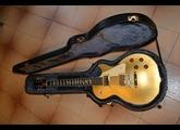 Epiphone Lynyrd Skynyrd 30th Anniversary LP Goldtop Tribute Guitar