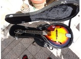 Epiphone MM-30S