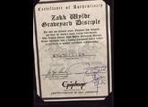 Epiphone Zakk Wylde Graveyard Disciple