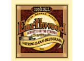 Ernie Ball EarthWood 80/20 Bronze Banjo