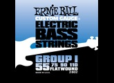 Ernie Ball Flat Wound Electric Bass