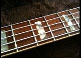 Fender American Deluxe Jazz Bass V QMT