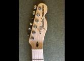 Fender American Performer Telecaster Hum
